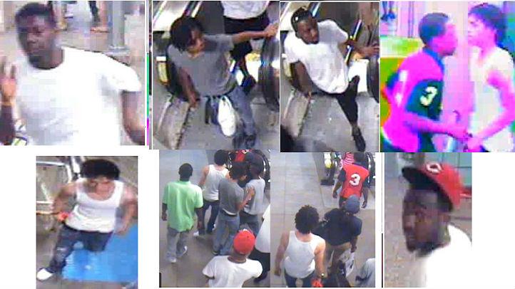 CTA robbery suspects