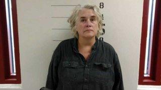Christina Fay Great Danes Case