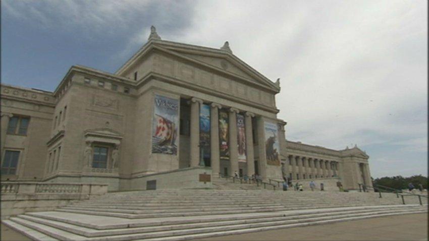 Field Museum 9-22_29013310