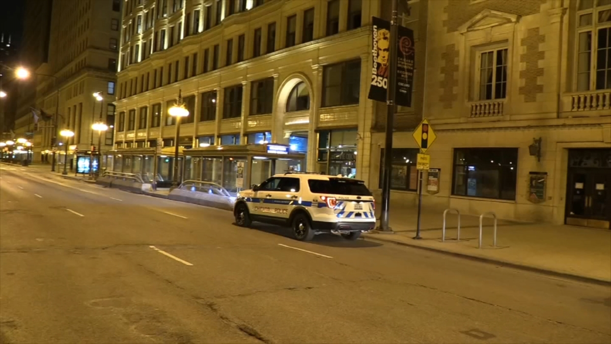 Man Robbed of Canada Goose Jacket on Michigan Avenue