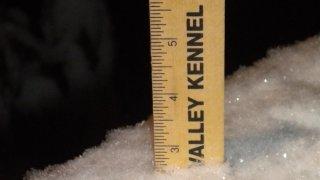 PHI snow ruler