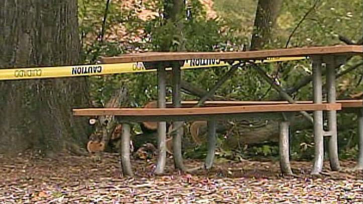 Picnic_Bench_PSU_Abington_Tree_Down_722x406_2102722597.jpg