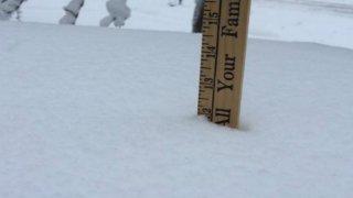 Ruler in Snow