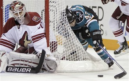 Coyotes Sharks Hockey