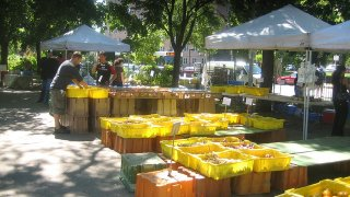 <h2> Loyola Farmers Market </h2>
