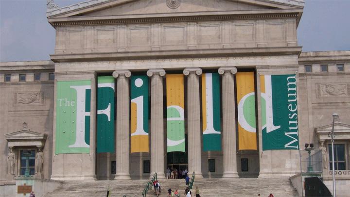field-museum-chicago