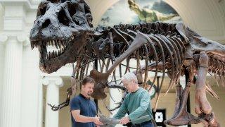 field museum new dinosaur 11