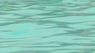 generic swimming pool water