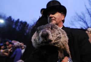 groundhog_closeup