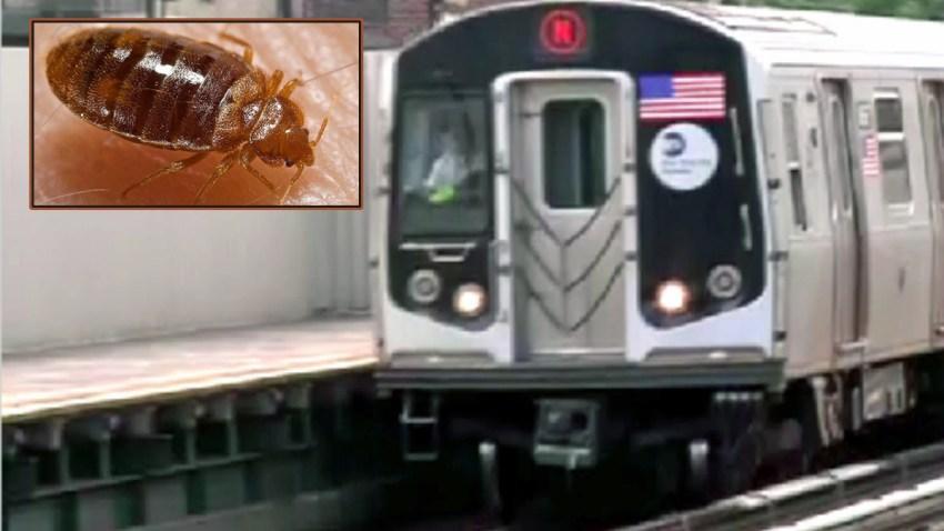 subway bedbugs