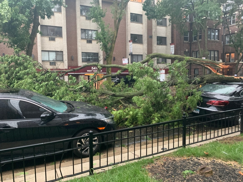 Photos: Dangerous Winds Cause Damage Throughout Chicago Area