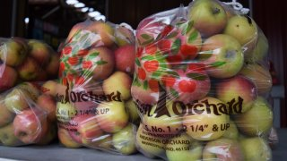 Apples are bagged at Anderson Orchard