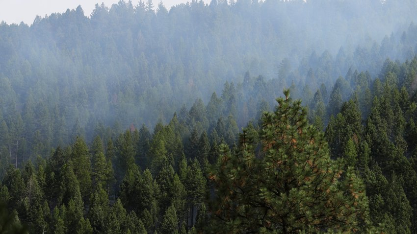 Smoke rises from prescribed burning of log piles, part of the Marshall Woods Restoration Project at the Rattlesnake National Recreation Area in the Lolo National Forest September 19, 2019 in Missoula, Montana.