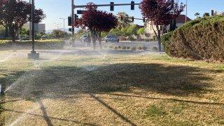 Sprinklers water grass near a street corner in Las Vegas