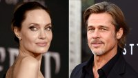 California High Court Won't Hear Brad Pitt Appeal in Custody Battle