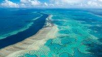 Australia Avoids UNESCO Downgrade of Great Barrier Reef