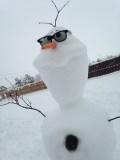 Your Snowman Photos