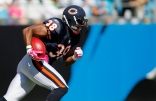 PHOTOS: Bears/Panthers Game Action