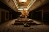 Abandoned_Metro_North_Mall