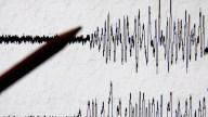 Powerful Quake Strikes Off Japan; No Tsunami Warning