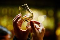 Sample Whiskeys, Bourbons and Scotches at River North Whiskey Festival