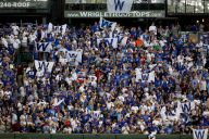 Cubs' Experience Should Come in Handy