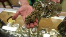 Lightfoot Unveils Proposed Legalized Cannabis Rules