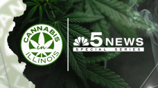 Submit Your Questions! Ask Experts About Recreational Cannabis in Illinois