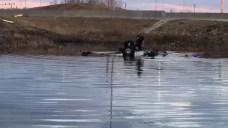 Footage Shows Frantic Rescue Effort After Car Flips in Pond