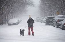 Breaking Down the Possibilities: Snow Heads for Chicago Area