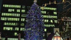 Chicago Lights Its Christmas Tree