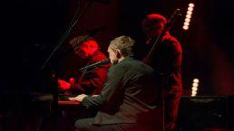 International Singer Songwriters Play in Chicago Venues