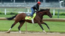 Road to the Triple Crown: Kentucky Derby Training