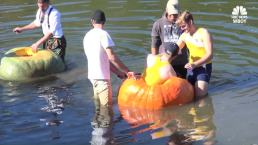 Giant Pumpkins the October Vehicle for Winter Regattas