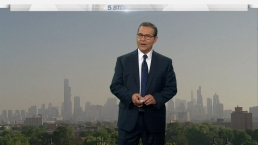 Chicago Weather Forecast: Hot & Humid