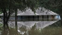 Mold Threatens Thousands More  After Louisiana Floods