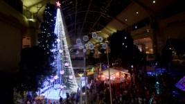 Australian Christmas Tree Sets Record With 518,838 Lights