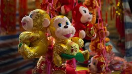What Feng Shui Experts Predict for Year of the Monkey