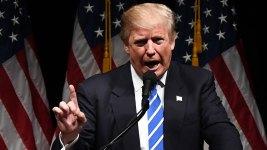 Trump Attacks Ex-Miss Universe in Overnight Tweetstorm