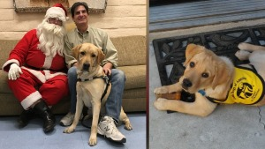 Newly Trained Guide Dogs Go Home for the Holidays