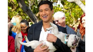 Celebrities Support #ClearTheShelters