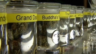 [CHI] Chicago Medical Marijuana Clinic Inundated With Calls