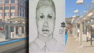 Sketch, New Description of CTA Thief Released