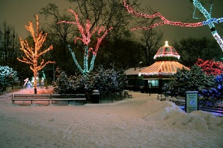 Lincoln Park Zoo Lights Up the Holidays