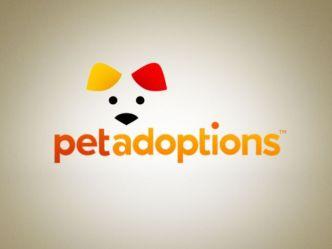 "Pet Adoptions: ""Smokey"""