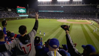 Cubs Unveil New Food, Drink Options at Wrigley Field