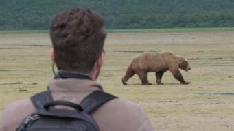 Alaska: Heading out of Hibernation