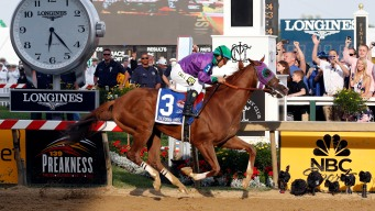 California Chrome Wins Preakness Stakes