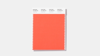 Sea Reefs and Sunsets: Living Coral Is Color of the Year