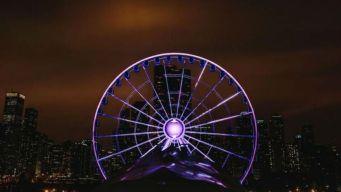 Navy Pier Reschedules Free Ferris Wheel Rides